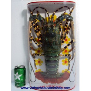 Big Dried Green Lobster -for Wall decoration -from Vietnam Sea-Taxidermy